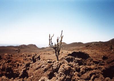 Foto Galapagos 1