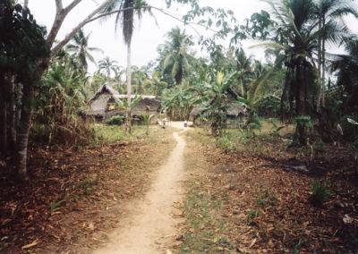 Foto Panama 9