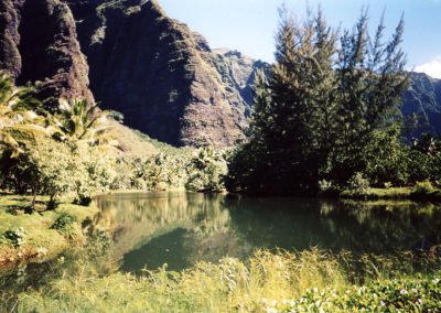 Foto Polinesia 17