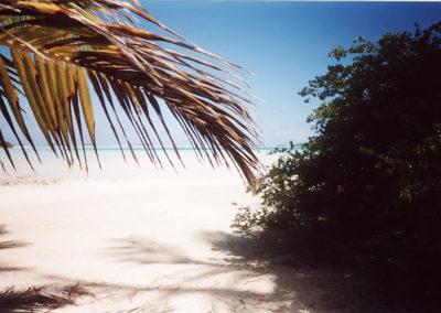Foto Polinesia 2