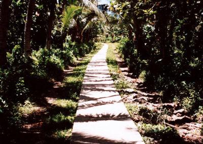Foto Samoa 11