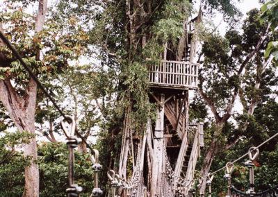 Foto Samoa 5