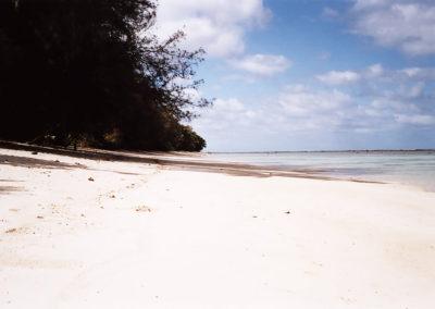 Foto Tonga 1
